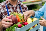 10 Reasons More Matters When It Comes to Fruits and Vegetables